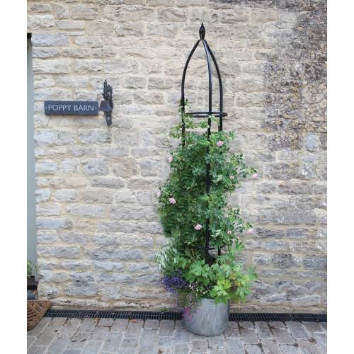 Obelisk Support for Climbing Plants OXFORD - 210cm