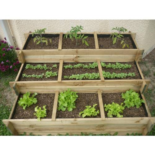 Raised Square Foot Garden