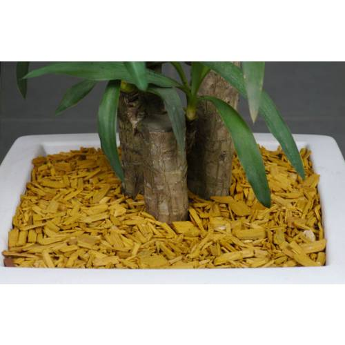 Coloured Wood Shavings - Yellow Gold