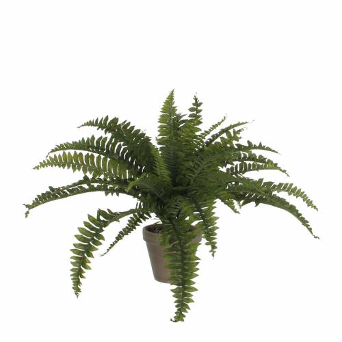 Artificial Plant - Boston Swordfern - MICA