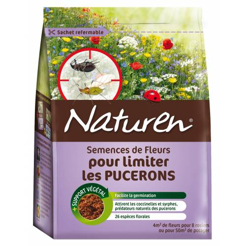 Flowers to limit aphids - Naturen