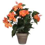 plante artificielle - hibiscus orange - mica